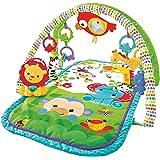 Fisher-Price Amis de la Jungle 3-en-1 tapis d'éveil musical pour bébé, transportable, arches de jeu et jouets, emballage ferm