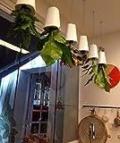 smartlife Upside Down Sky Übertopf Selbstwässernder Blumentopf zum Hängen Home Garten Dekoration Medium Größe (weiß)