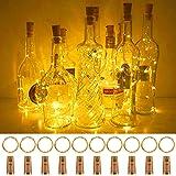 Fulighture Flaschenlicht 20 LEDs 2M Lichtkette Batteriebetrieben Flaschenlichterkette Kupferdraht Drahtlichterkette für Party