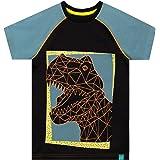 Harry Bear Camiseta de Manga Corta para niños Dinosaurio