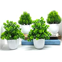 YTC Artificial Plants for Home Decor   Pack of 4   (2 Grass & 2 Green Plant)