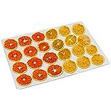 10 Pièces Feuilles de Déshydrateur Carrées en Silicone Tapis de Déshydrateur Antiadhésifs pour Fruits Alimentaires Réutilisab
