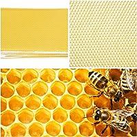 Acciaio gavlanizzato 10 cornici Supporti per telai per Alveare Beekeeping Supplies UK Distanziatori castellati Tre Paia