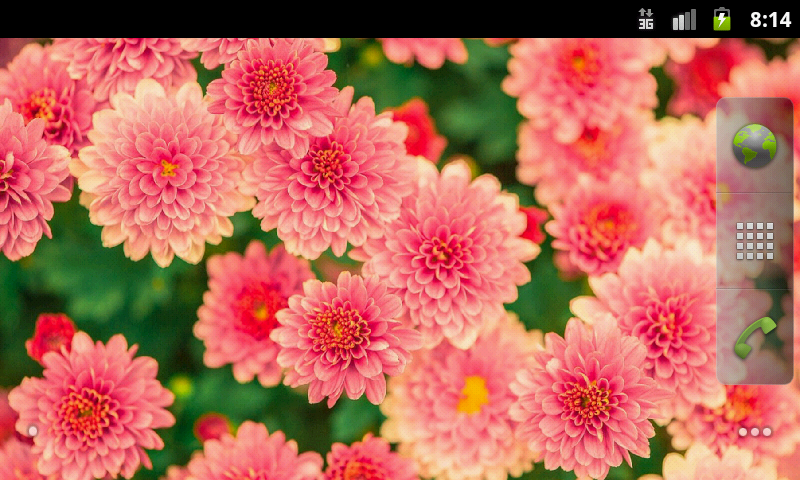 Pretty spring flowers wallpaper amazon appstore for android mightylinksfo