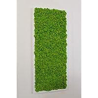 Quadro Vegetale - 70 x 30 cm - Verde 15
