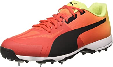 Puma Men's Evospeed 18.1 crickSpikeFade Cricket Shoes