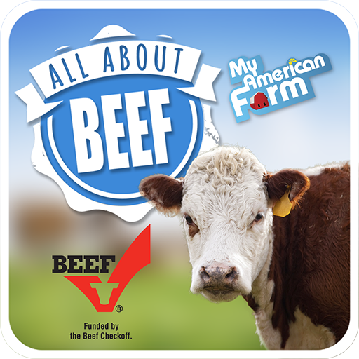 All American Foundation (All About Beef)