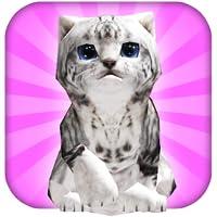 Eine Kitty Cat Spielzeit: Mein Littlest Kitten
