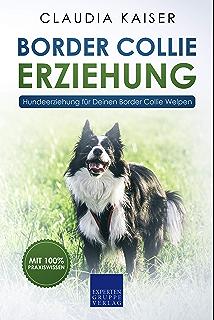 Retriever Erziehung Hundeerziehung Fur Deinen Golden Retriever Welpen Retriever Band 1 Ebook Kaiser Claudia Amazon De Kindle Shop