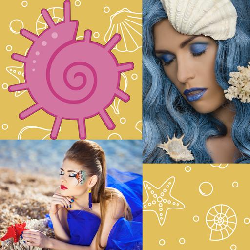 Collage de fotos de conchas marinas