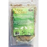 Prime Reptile Supplies Live Moss (Small 2 Litre)