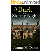 A DARK AND STORMY NIGHT a cozy murder mystery full of twists (Dorothy Martin Mystery Book 10) (English Edition)