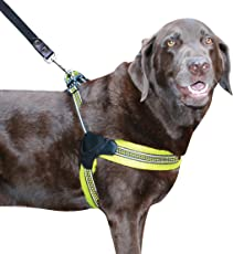 Sporn Easy Fit Dog Harness,Yellow, Large