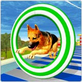 Crazy Dog Jump Stunt Sim 3D