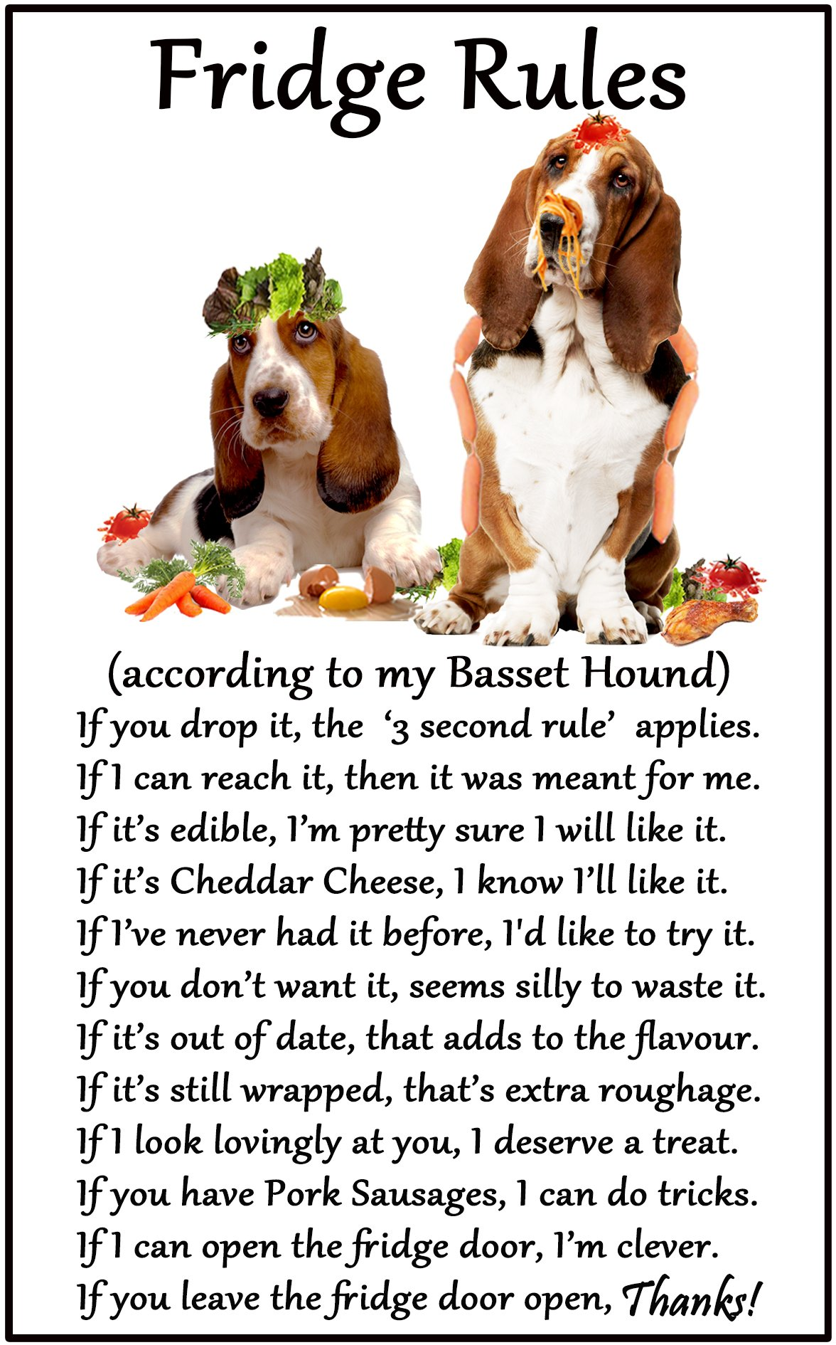 Fridge Magnets Basset Hound Gift – Fridge Rules – Large Fun flexible size 16cms x 10 cms (approx. 6″ x4″)