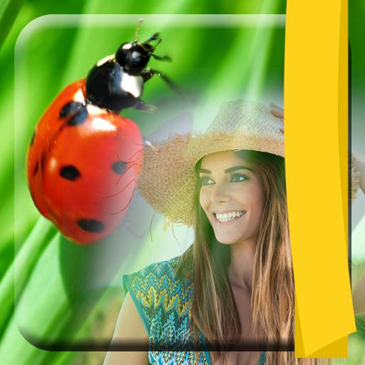 cornici-per-foto-ladybug