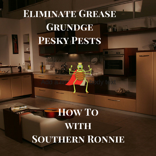Eliminate Grease Grundge and Pests in the Kitchen -