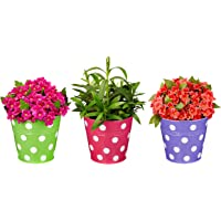 Amazon Brand - Solimo Corrosion Resistant Hanging Planter - Set of 3 (Round - Green, Pink, Purple)
