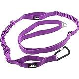 i-Dog Longe de Traction Canicross Confort réglable en Longueur avec Double élastique Anti-à-Coups et Double poignée (Violet)