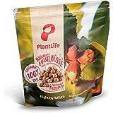 Siciliaanse biologische hazelnoten - 1kg - Extra grote gepelde hazelnootpitten - Onbehandeld en ongebrand - Raw food - Vegan