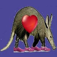 Aardvark Pedometer Plus Heart Rate