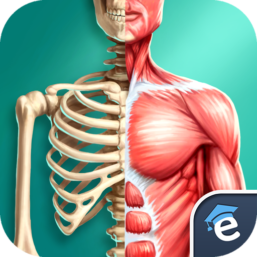 discover-human-body-anatomy-and-physiology-3d