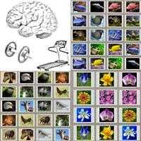 Fun Memory Practice