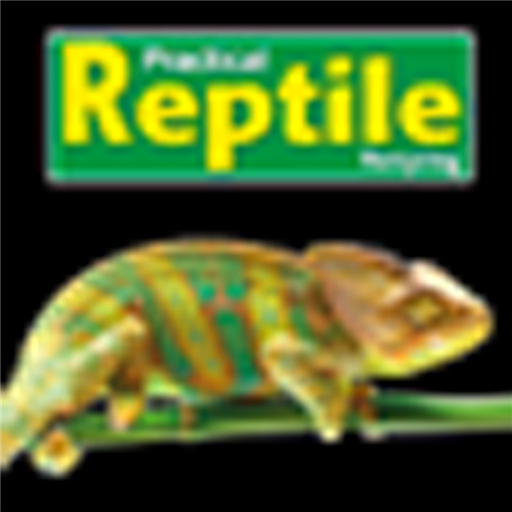 practical-reptile-keeping
