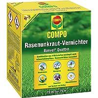 Compo Rasenunkraut-Vernichter Banvel Quattro (Nachfolger Banvel M), Bekämpfung von schwerbekämpfbaren Unkräutern im…