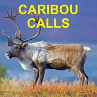 Caribou Calls for Hunting