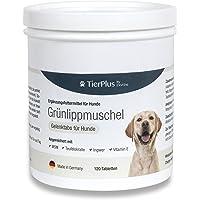 EXVital Grünlippmuschel für Hunde mit MSM, Ingwer, Chondroitin, Glucosamin und Teufelskralle angereichert. Hohe…