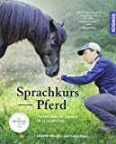 Sprachkurs Pferd: Pferdesprache lernen in 12 Schritten