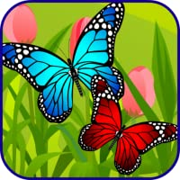 Butterfly Link Games For Kids