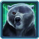 Aventura Ice Bear Run
