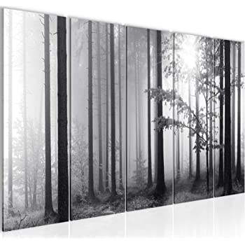 leinwandbild birkenwald birke wald baum landschaft b ume weg schwarz wei leinwand bild. Black Bedroom Furniture Sets. Home Design Ideas