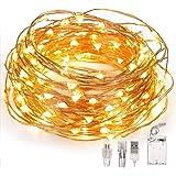 Fulighture Guirlande lumineuse, 100 LED 10 m, fil de cuivre décoratif,alimentée par piles/USB, 2 modes, IP65 étanche pour déc
