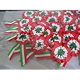 10 COCCARDA Tricolore Artigianale in Tessuto 10 x 5 cm