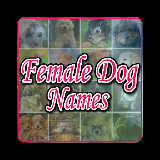Female Dog Names (Perro Pitbull)