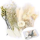 Fleurs Séchées Naturelles Pressée Mélangées DIY Floral Decoration Bouquet Vrais Florals Bricolage pour Resine Bougie