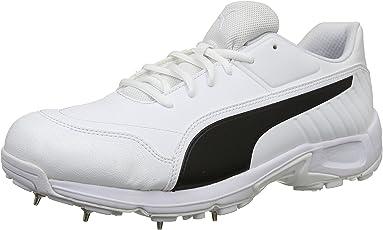 Puma Men's Evospeed 18.1 C Spikemen Cricket Shoes