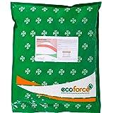 CULTIVERS Harina de Hueso de 5 kg. Abono para Plantas Ecológico. Aporta Fósforo y Calcio a los Cultivos. Fertilizante 100% Na