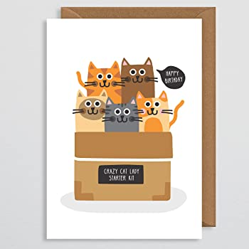 Cat Birthday Card Funny