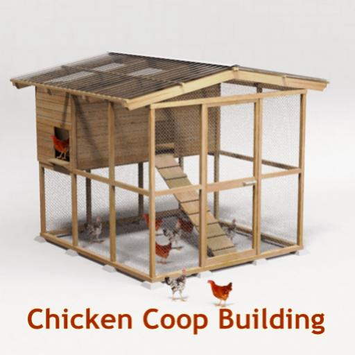 chicken-coop-building