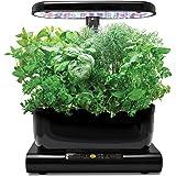 AeroGarden Harvest - Kit de cultivo interior smart garden, 6 capsulas, 20W, negro
