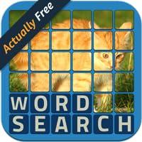 Wordsearch Revealer - Kittens