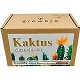 growbro Kaktus, Anzuchtset inkl. Sprühflasche, Geburtstagsgeschenk, Sukkulenten, Geschenke für Frauen & Männer…