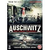 Auschwitz: The Final Journey [DVD]