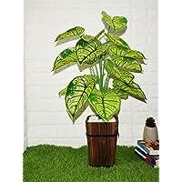 Fourwalls Artificial PVC Big Leaves Plant without pot (25 cm x 25 cm x 70 cm, Multicolor)