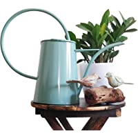 Mahogany Life Watering Can for Gardening (1.8 litres) - Stylish Metal Watering Pot for Indoor or Outdoor House Plants…