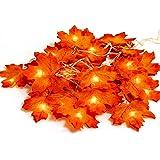 Tiisen herfstslinger, esdoornblad lichtketting, herfstdecoratie, garland voor oogstfeesten, herfstdecoratie, bruiloft, decora